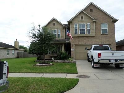 Houston Single Family Home For Sale: 10003 Fairlane Oaks Drive W