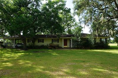 Sweeny Single Family Home For Sale: 9401 F M 1459