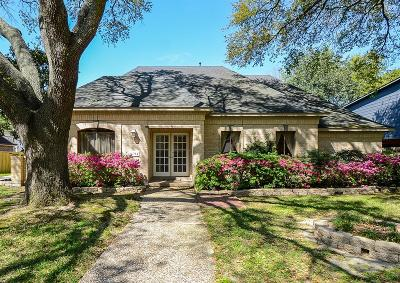 Houston Single Family Home For Sale: 18314 Forest Town Drive