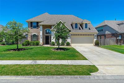 Dickinson Single Family Home For Sale: 1713 Coral Cliff Drive