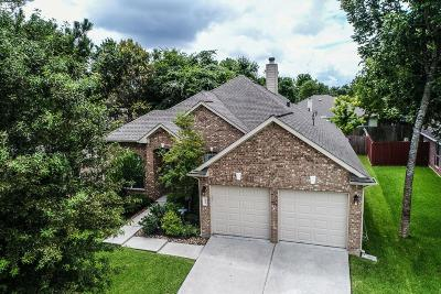 Montgomery Single Family Home For Sale: 13217 Enchanted Way Drive