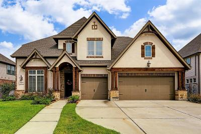 Pearland Single Family Home For Sale: 3575 Mustang Ridge Lane