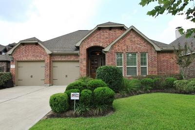 Porter Single Family Home For Sale: 20038 Mitchell Cove Drive