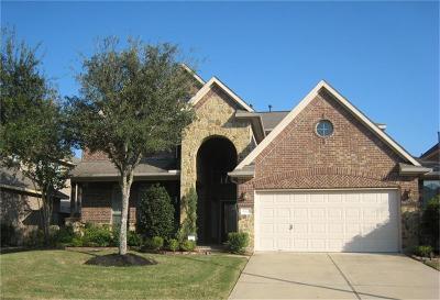 Katy Single Family Home For Sale: 10110 Sandhill Pine Court
