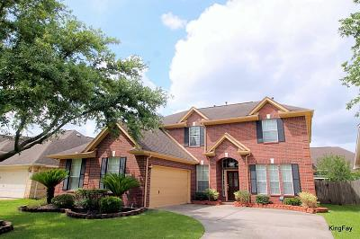 Sugar Land Single Family Home For Sale: 4623 Schiller Park Lane