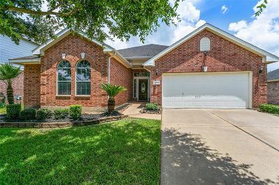 Houston Single Family Home For Sale: 17007 Terrace Park Drive