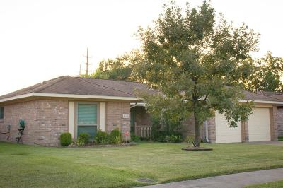 Sugar Land Single Family Home For Sale: 1911 Michele Drive