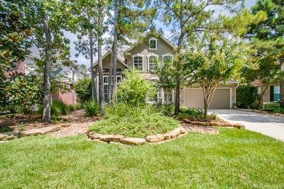Single Family Home For Sale: 70 E Sundance Circle