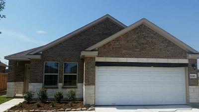 Tomball Single Family Home For Sale: 23015 Striped Maple