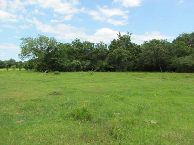 Lavaca County Country Home/Acreage For Sale: County Road 1h