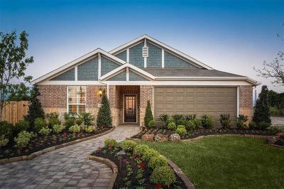 Houston Single Family Home For Sale: 16103 Brookside Willow Lane