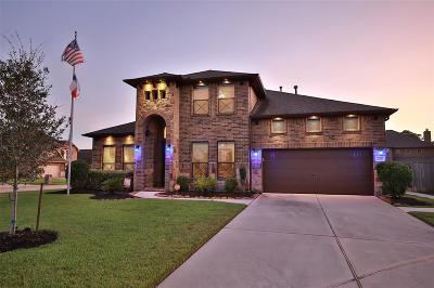 Tomball Single Family Home For Sale: 20803 Noble Crusade Court