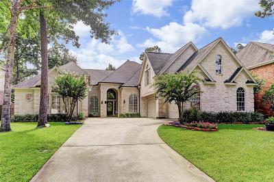 Houston Single Family Home For Sale: 6 Twilight Glen Court