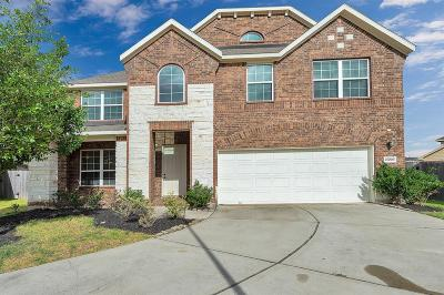 Katy Single Family Home For Sale: 27006 Colt Sky Court