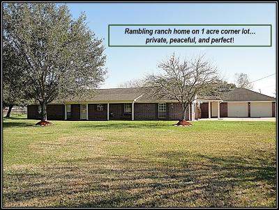 Alvin Single Family Home For Sale: 1690 County Road 965