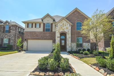 Missouri City Single Family Home For Sale: 10026 Foggy River