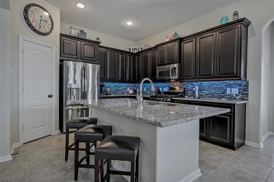 Harris County Single Family Home For Sale: 17106 Upper Ridge Lane