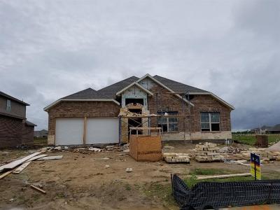 League City TX Single Family Home For Sale: $337,290
