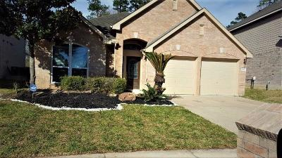 Houston Single Family Home For Sale: 11442 Cypresswood Trail Drive