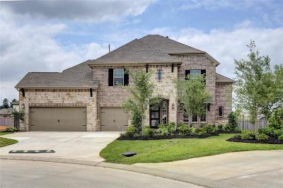 The Woodlands Single Family Home For Sale: 29 Trailing Lantana Place