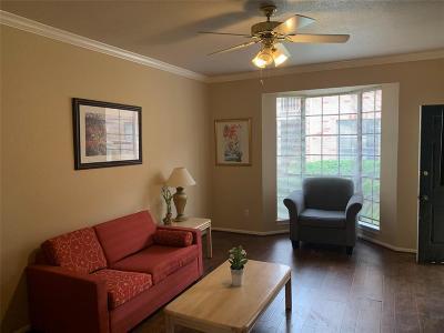 Houston Condo/Townhouse For Sale: 2255 Braeswood Park Drive #189