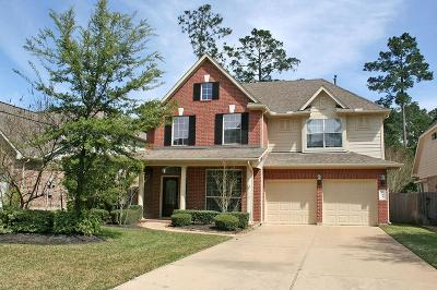 The Woodlands Single Family Home For Sale: 153 E Frontera Circle
