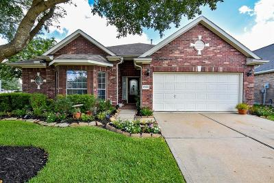 Houston Single Family Home For Sale: 17126 Sheffield Knoll Lane
