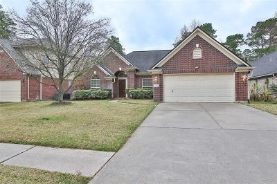 Houston Single Family Home For Sale: 9315 Rodgers Road