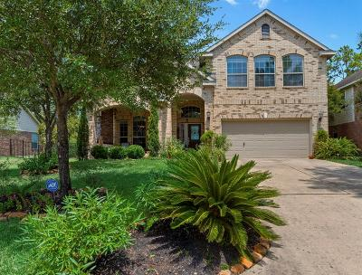 Spring Single Family Home For Sale: 123 S Rocky Point Circle