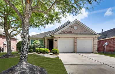 Pearland Single Family Home For Sale: 2111 Sailwind Drive