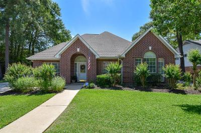 Galveston County, Harris County Single Family Home For Sale: 7811 Rockside Lane