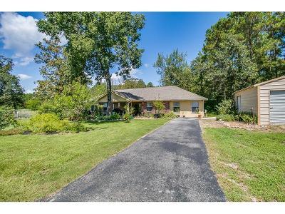 Magnolia Single Family Home For Sale: 24805 1/2 Red Oak Street