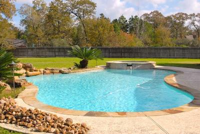 Conroe Single Family Home For Sale: 2702 Magenta Meadow