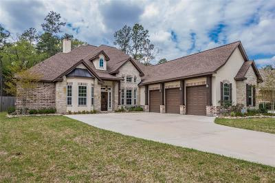 Spring Single Family Home For Sale: 27723 Ossineke Drive