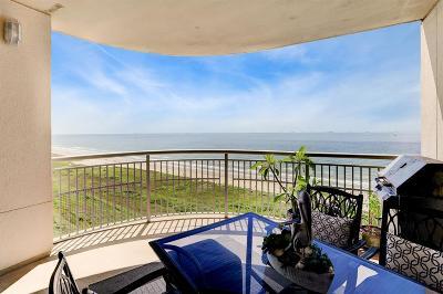 Galveston Mid/High-Rise For Sale: 801 E Beach Drive #BC1104