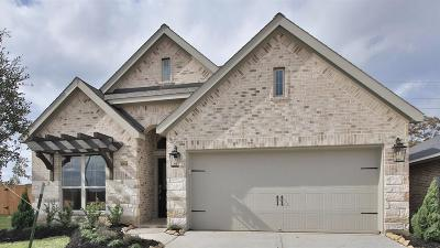 Tomball Single Family Home For Sale: 19811 Bronze Spur Court