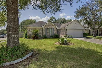 Friendswood Single Family Home For Sale: 16010 Copper Canyon Drive