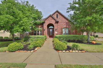 Sugar Land Single Family Home For Sale: 4610 Burclare Court