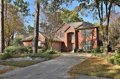 Houston Single Family Home For Sale: 7714 Allegro Drive