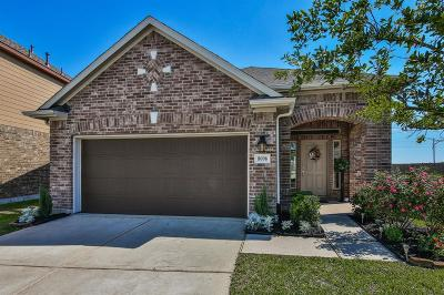 Cypress Single Family Home For Sale: 8006 Oxbow Manor Lane