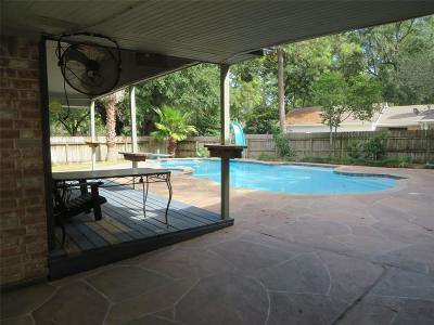 Houston Single Family Home For Sale: 10906 Fawnview Drive