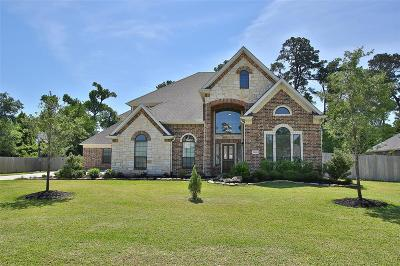 Tomball Single Family Home For Sale: 22618 Pineleigh Court