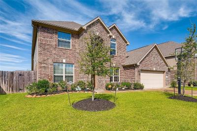 Tomball Single Family Home For Sale: 13126 Hazelwood Hollow Drive
