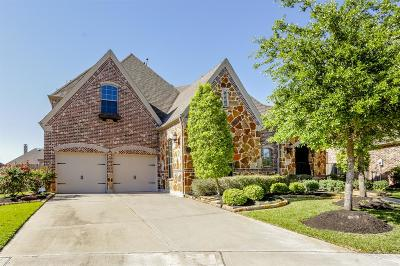 Riverstone Single Family Home For Sale: 3822 Hunters Gate Court