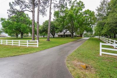 Austin County Single Family Home Option Pending: 508 Standing Oaks Lane