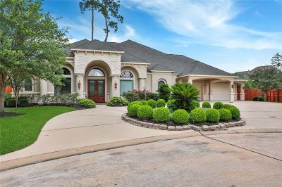 Cypress Single Family Home For Sale: 13814 Frio Springs Court