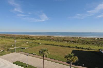 Galveston Residential Lots & Land For Sale: 1825 & 1829 Seaside Drive