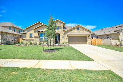 Tomball Single Family Home For Sale: 8914 Stonebriar Creek Crossing