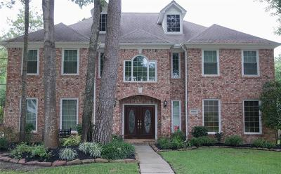 Tomball Single Family Home For Sale: 16623 Avenfield Road