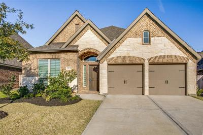 Pearland Single Family Home For Sale: 13215 Sage Meadow Lane